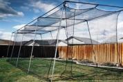 #21 Batting Cage